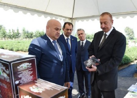 Prezidentin Lənkəran səfəri –