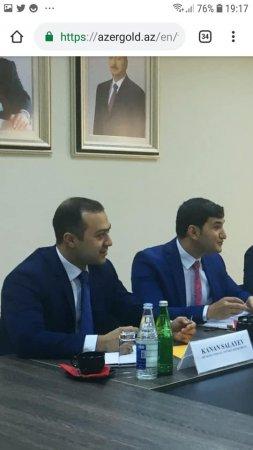 Deputat və oğullarının milyonlarla ölçülən sərvəti -